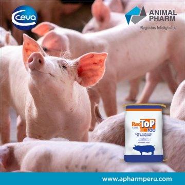 Animal Pharm sigue fortaleciendo su cartera de productos, nueva sociedad estratégica con Ceva Perú