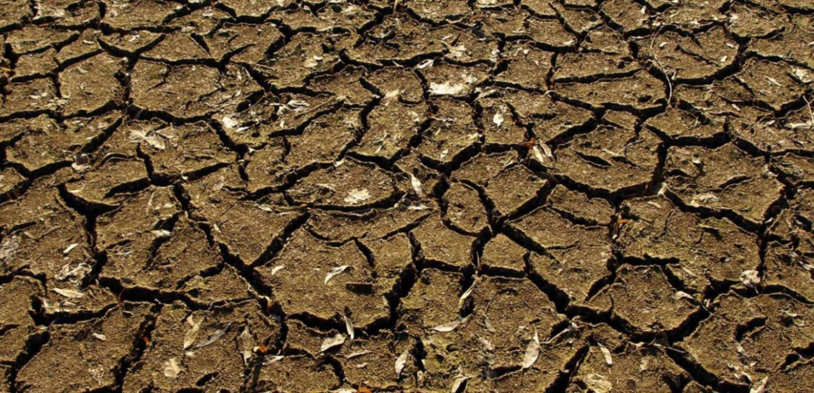 Chile decretado en emergencia agrícola por sequía