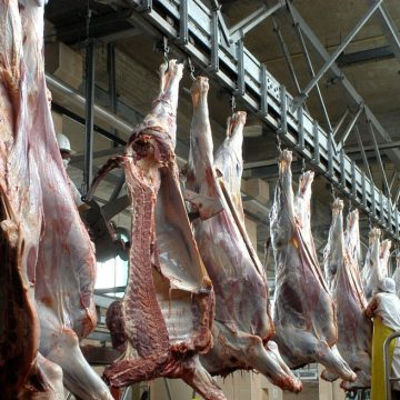 Minagri implementó mejoras en mataderos de Cajamarca