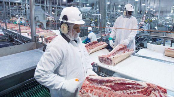 Ganadería porcina y bovina van de la mano en Argentina