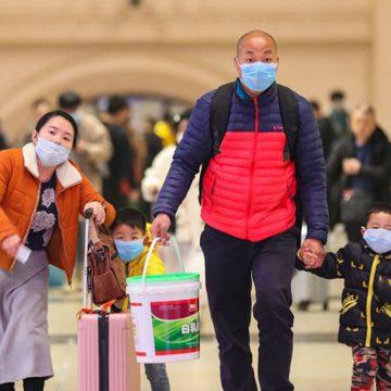 China asegura que el tráfico ilegal de animales es culpable del brote del nuevo coronavirus