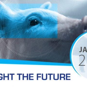 Ceva Spotlight the Future: boletín mensual de Ceva Swine