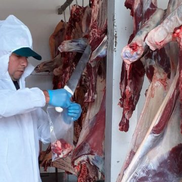 Minagri promueve producción de alimentos sanos e inocuos