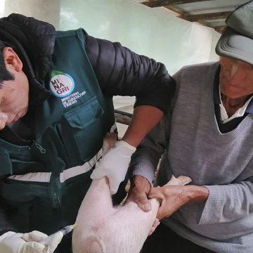 Minagri benefició a ganaderos en Ayabaca, Piura