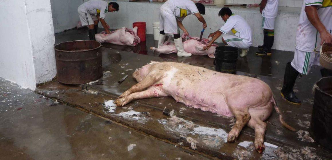 Minagri clausuró matadero de Chiclayo por infracciones