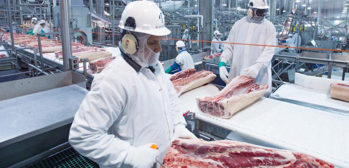 Estados Unidos: sacrificio porcino bajará más de un 10%