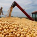 Perú suspende las importaciones de productos agropecuarios de Bolivia