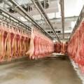 Brasil: Exportaciones de carne de cerdo registran el mayor volumen mensual de su historia