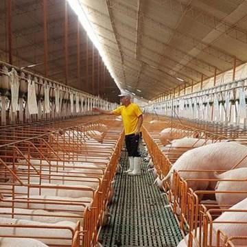 Asoporci: Nuestra industria mantiene un crecimiento sostenido y se prepara para la exportación