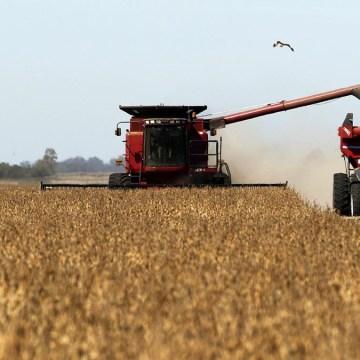 Intensa sequía afecta producción de maíz y soja de los EE.UU.